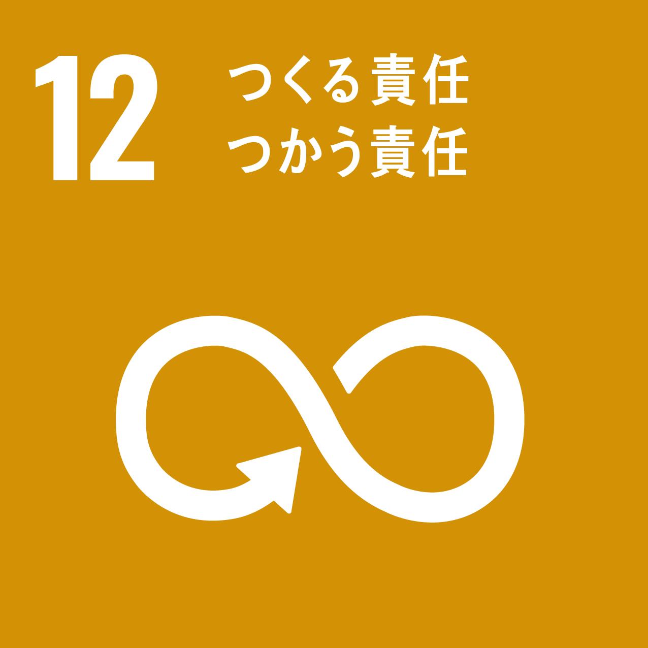 SDG's icon No12