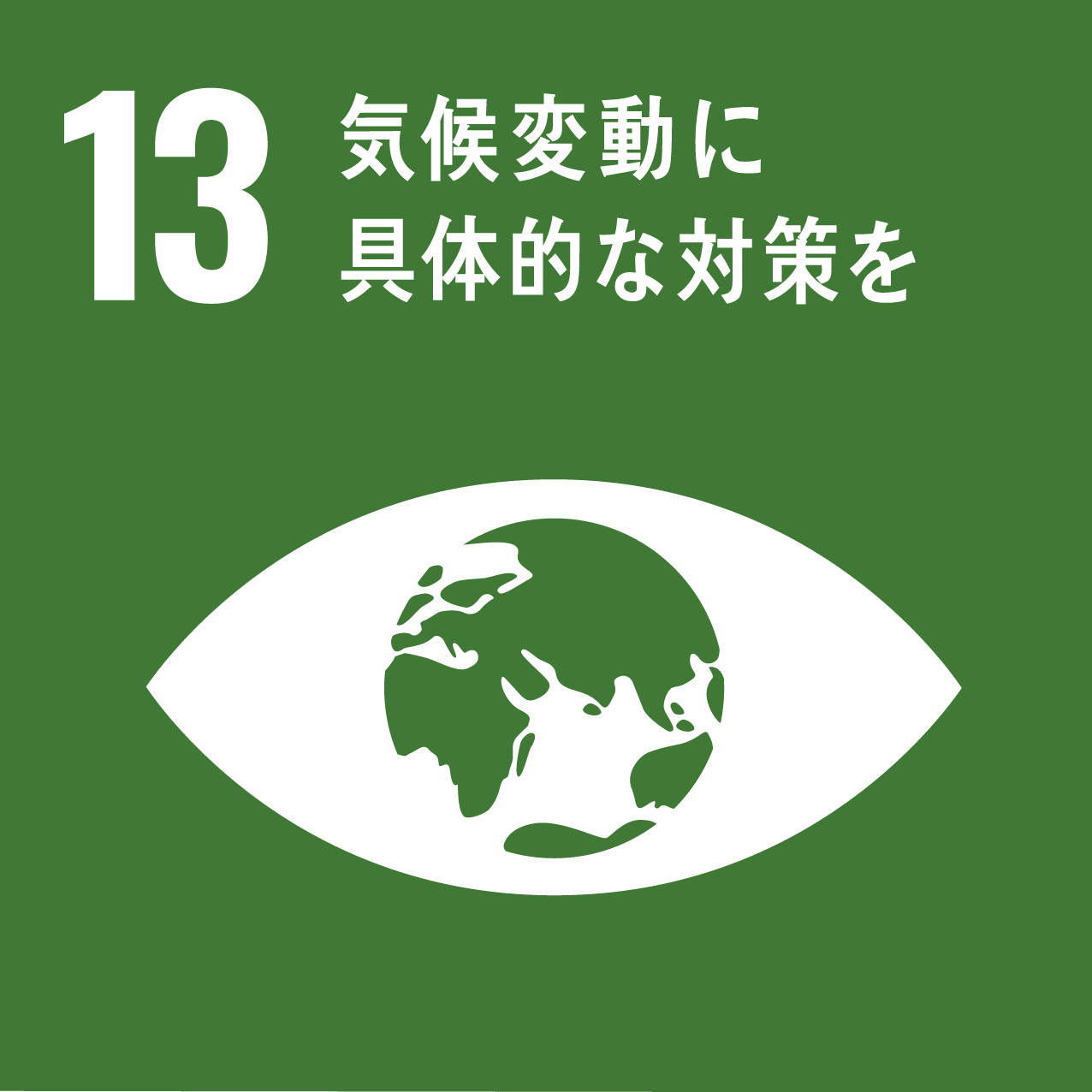 SDG's icon No13