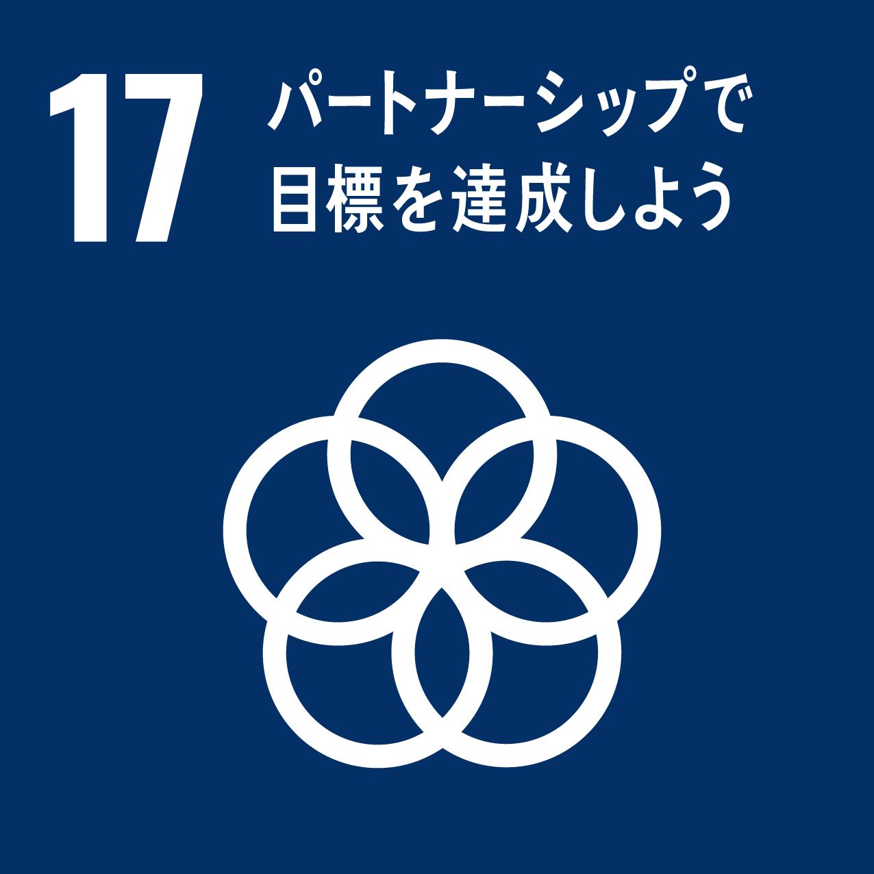 SDG's icon No17