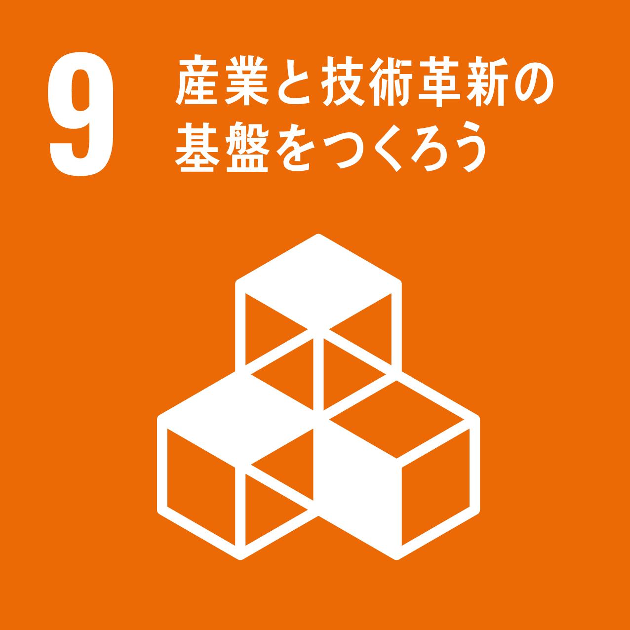 SDG's icon No9